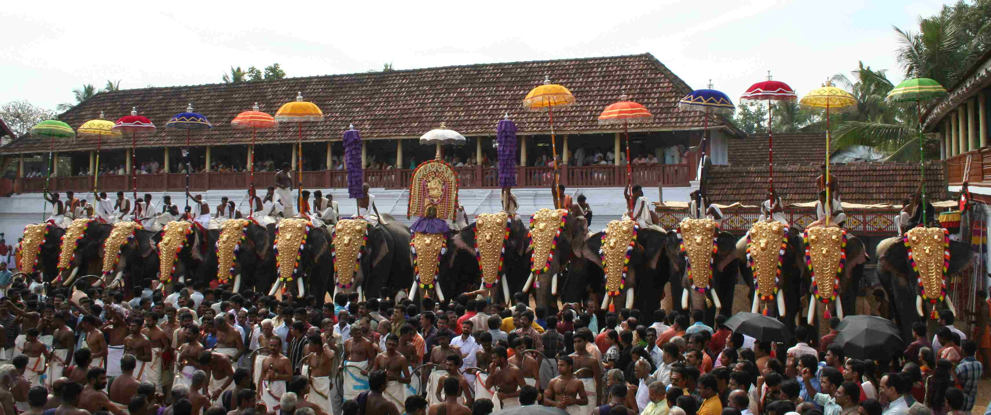 thrippunithura-elephants8_crop